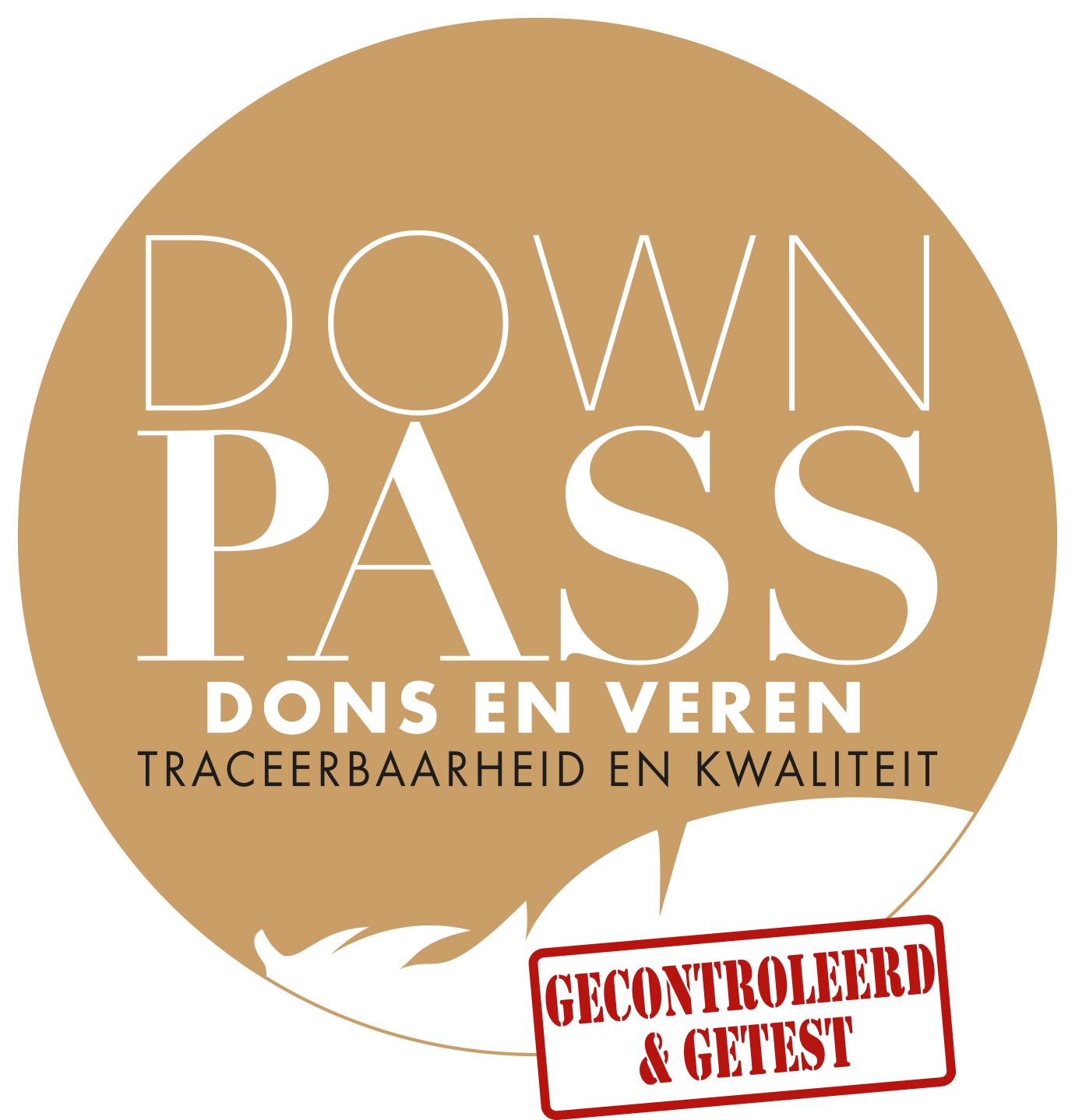 Logo Downpass